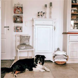 Wohnbeispiel im französischen Landhausstil, Kissen in Toile de Jouy